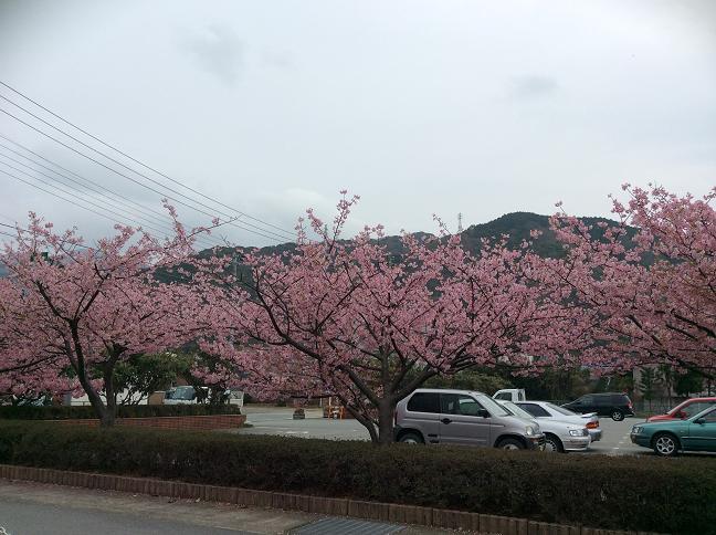 2014-03-01 15.38.53.jpg