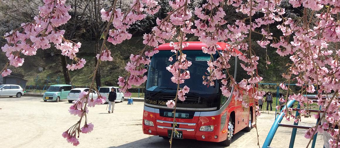 観光バス・貸切バス・東京・千葉県千葉市の武井観光トップ画像2